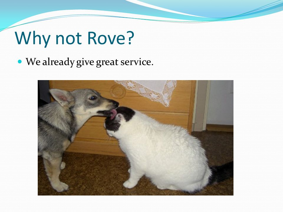 Why not Rove We already give great service.