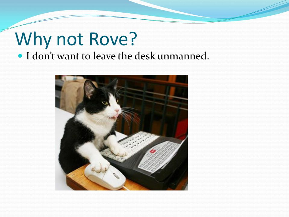 Why not Rove I don't want to leave the desk unmanned.
