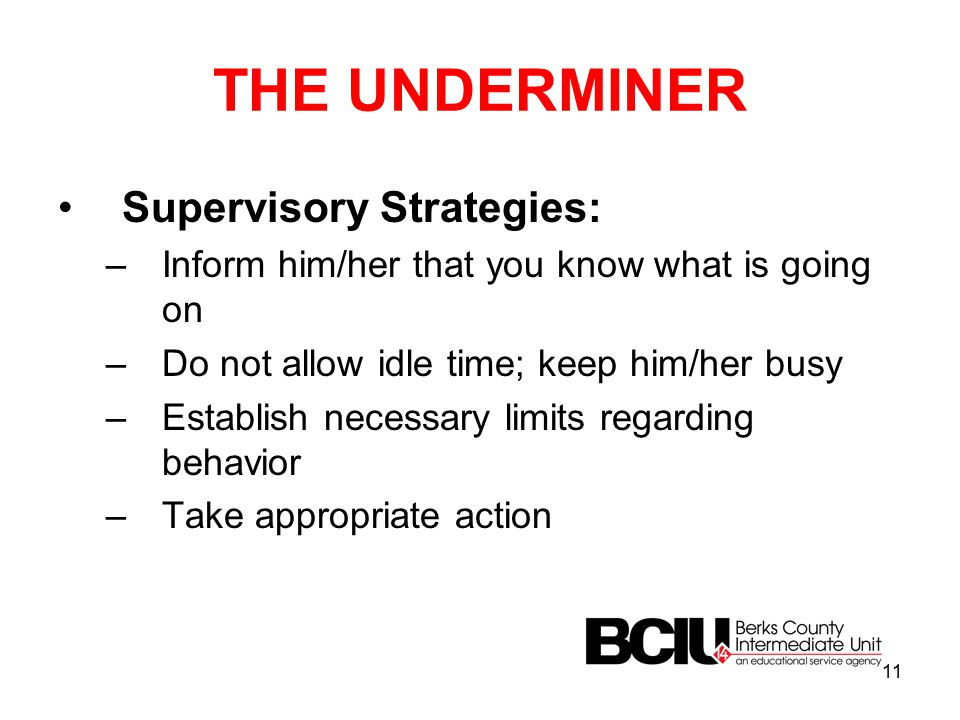 THE UNDERMINER Supervisory Strategies: –Inform him/her that you know what is going on –Do not allow idle time; keep him/her busy –Establish necessary limits regarding behavior –Take appropriate action 11