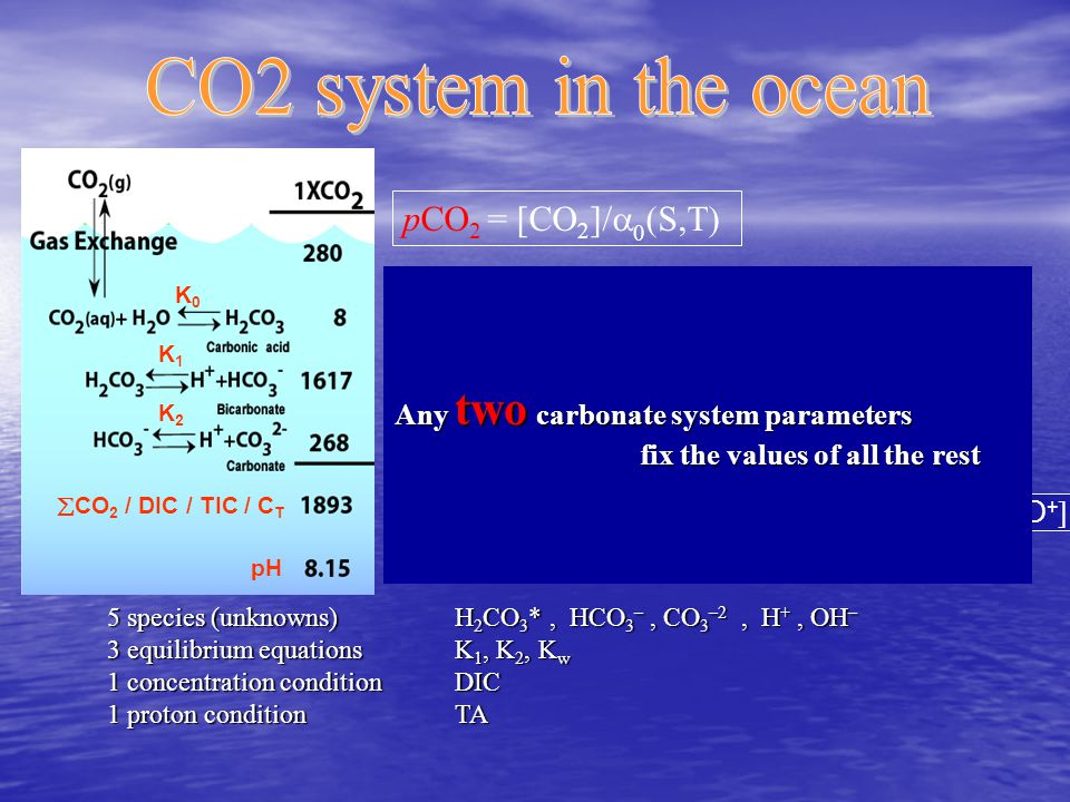 pH  CO 2 / DIC / TIC / C T K0K0 K1K1 K2K2 pH= -log [ H 3 O + ] C T = [ CO 2 ] + [ HCO 3 - ] + [ CO 3 2- ] Mass balance TA = A T =[HCO 3 - ]+2· [ CO 3 2- ] + [ B(OH) 4 - ] + [ OH - ] - [ H 3 O + ] Charge balance pCO 2 = [CO 2 ]/  0 (S,T) 5 species (unknowns) H 2 CO 3 *, HCO 3 –, CO 3 –2, H +, OH – 3 equilibrium equations K 1, K 2, K w 1 concentration condition DIC 1 proton condition TA Any two carbonate system parameters fix the values of all the rest fix the values of all the rest
