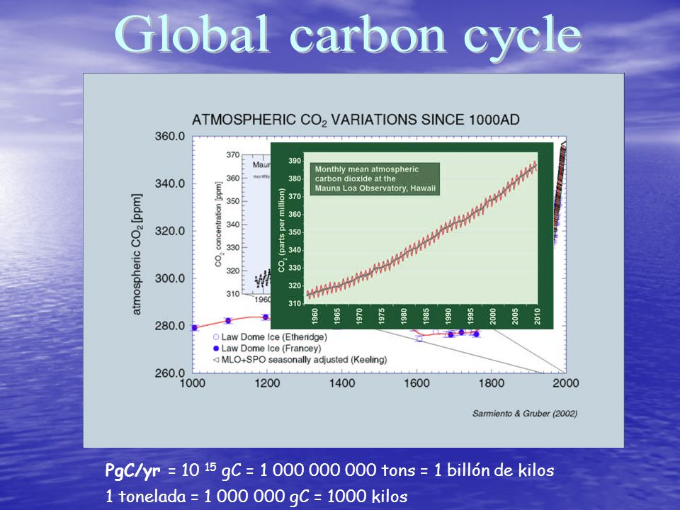 Global carbon cycle +65 -125 1.7 Land use change +18 21.9 20 1.9 Land sink 1.6 +100 5.4 -220 +161 & the anthropogenic perturbation PgC/yr = 10 15 gC = 1 000 000 000 tons = 1 billón de kilos 1 tonelada = 1 000 000 gC = 1000 kilos