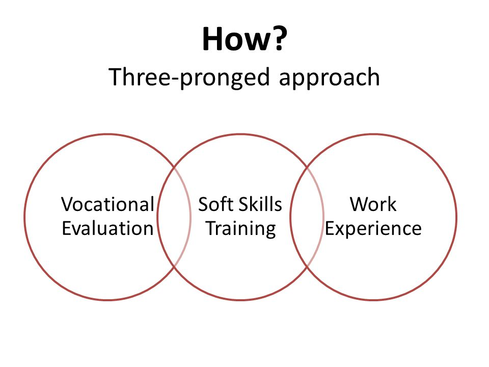 How? Three-pronged approach Vocational Evaluation Soft Skills Training Work Experience