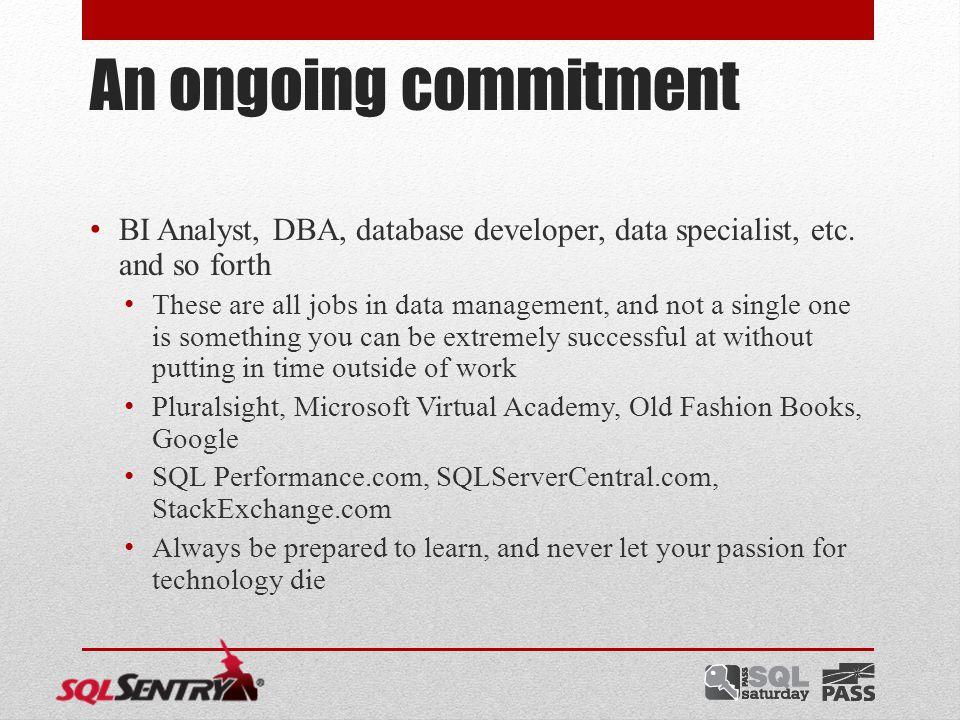 An ongoing commitment BI Analyst, DBA, database developer, data specialist, etc.