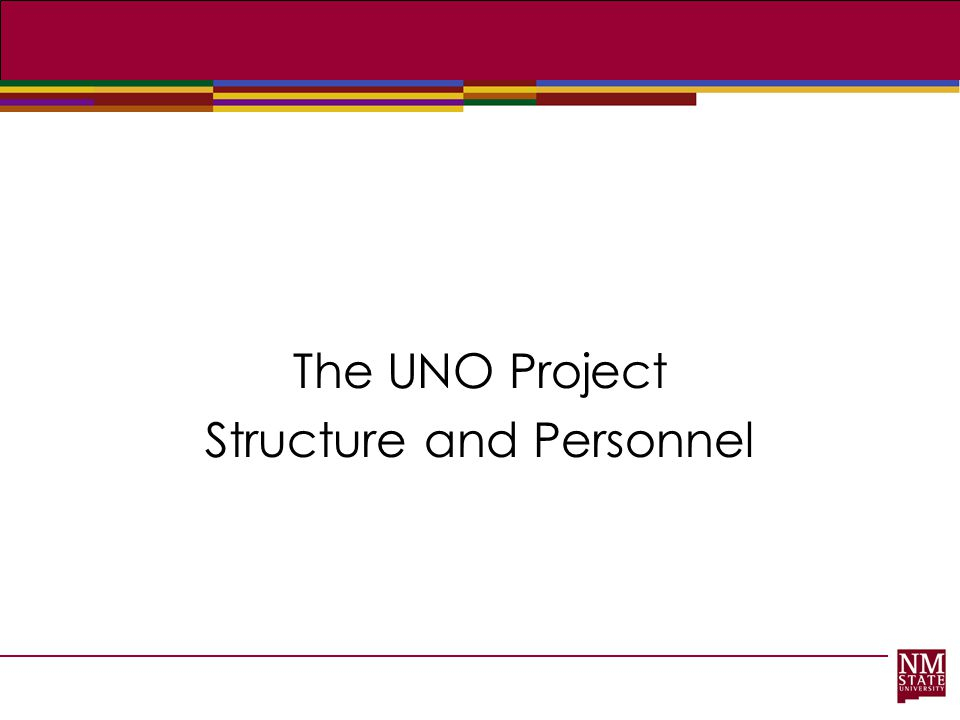 The UNO Project Structure and Personnel