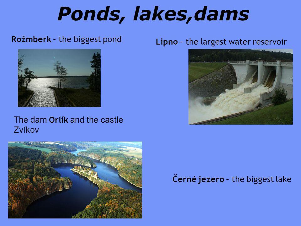 Ponds, lakes,dams Lipno – the largest water reservoir Černé jezero – the biggest lake The dam Orlík and the castle Zvíkov Rožmberk – the biggest pond
