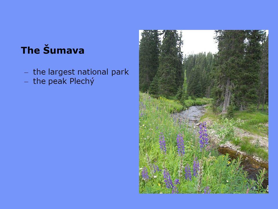 The Šumava – the largest national park – the peak Plechý