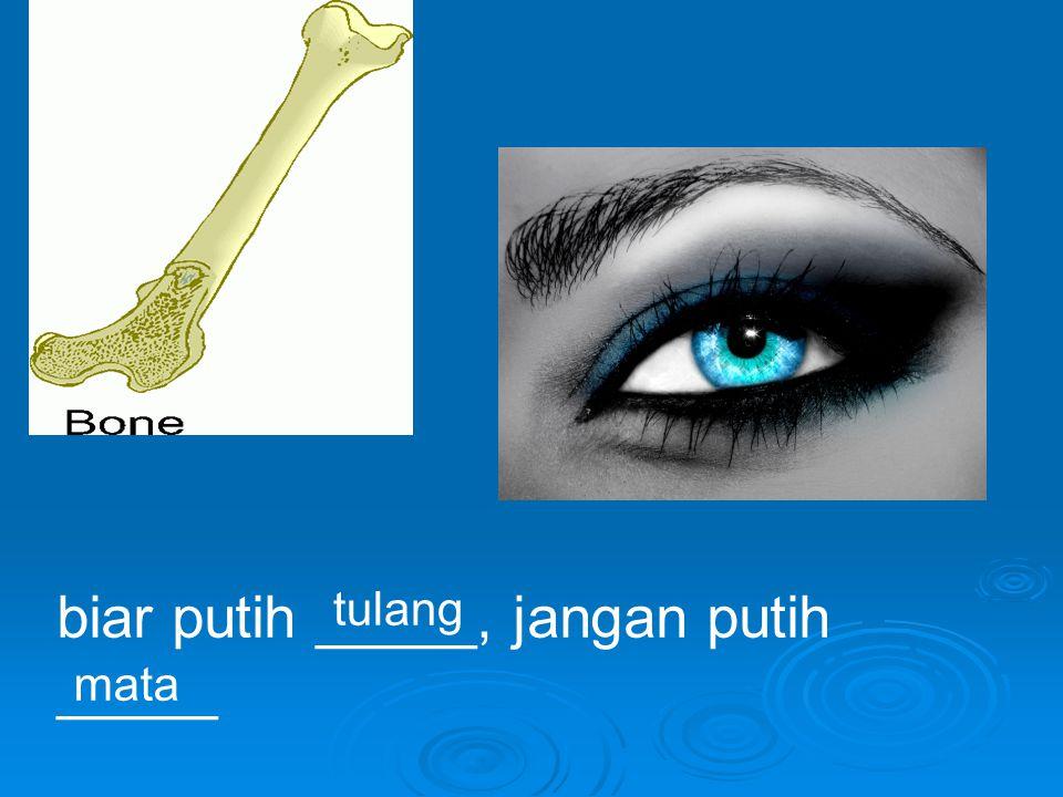 biar putih _____, jangan putih _____ tulang mata