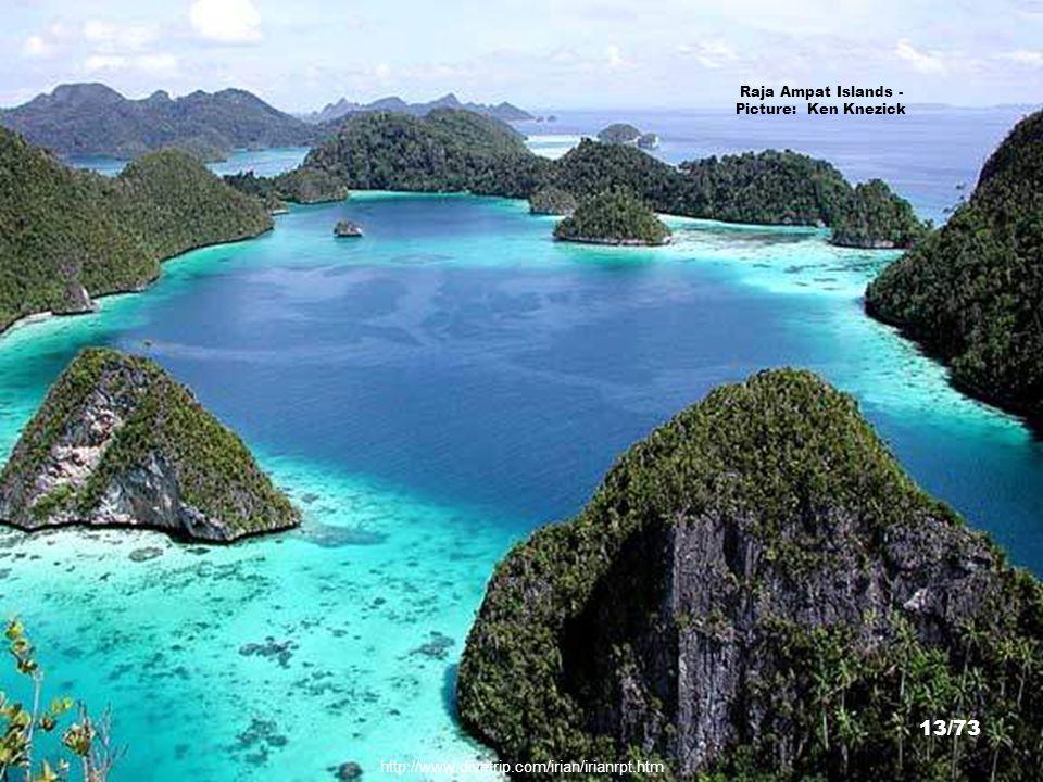 http://media.photobucket.com/image/papua/melonzz/panta11-1.jpg o=211 Raja Ampat Islands - Picture: melonzz 12/73