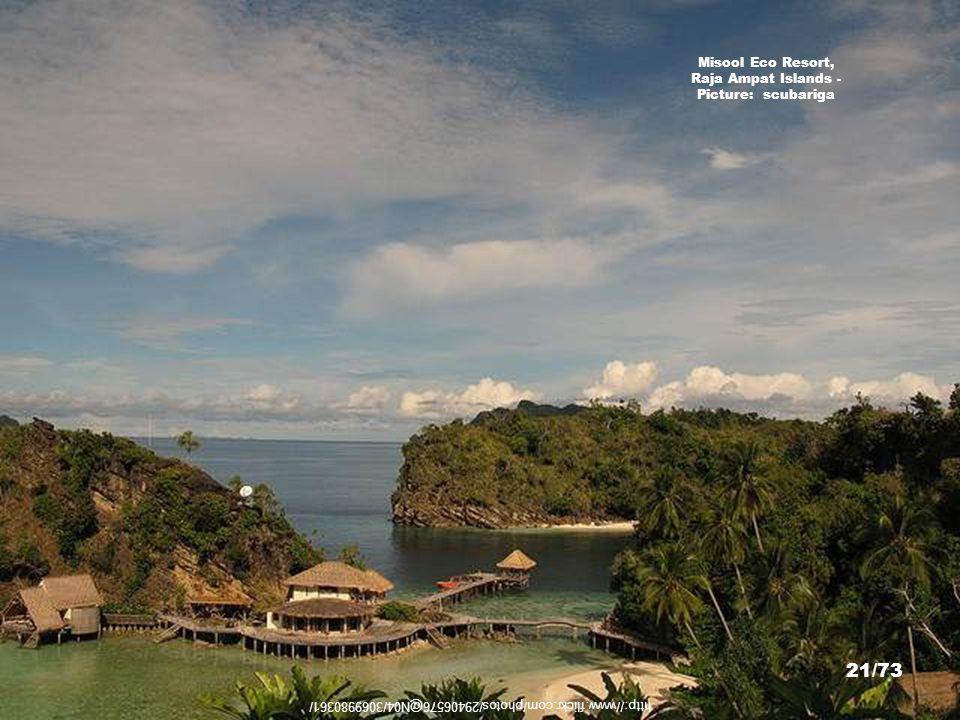 http://travels.patrik.com/ra/ Misool Island - Picture: Patrick Nilsson 20/73 Music: To'u Ora No Oe Artist: Coco et Son Groupe Folklorique Temaeva