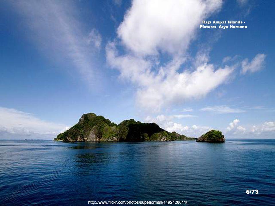 http://www.flickr.com/photos/superiorman/4492428611/ Raja Ampat Islands - Picture: Arya Harsono 5/73