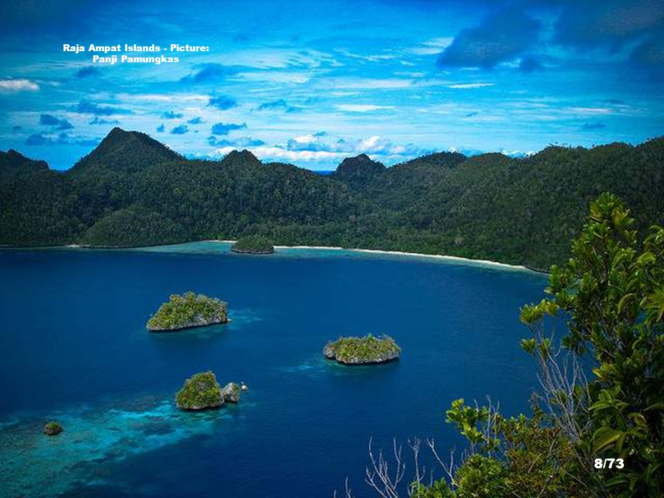 http://dianhasan.wordpress.com/2009/07/08/protecting-marine-biodiversity-raja-ampat-west-papua-indonesia/ Raja Ampat Islands - Picture: Dian Hasan/The Nature Conservancy 7/73