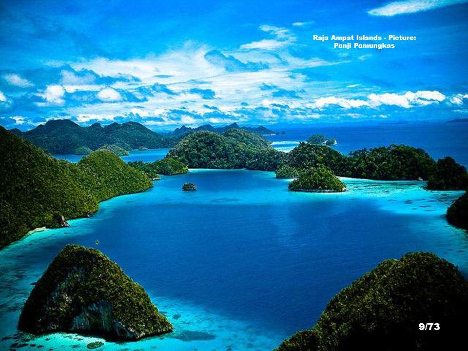 Raja Ampat Islands - Picture: Panji Pamungkas 9/73
