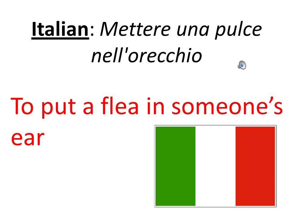 Italian: Mettere una pulce nell orecchio To put a flea in someone's ear