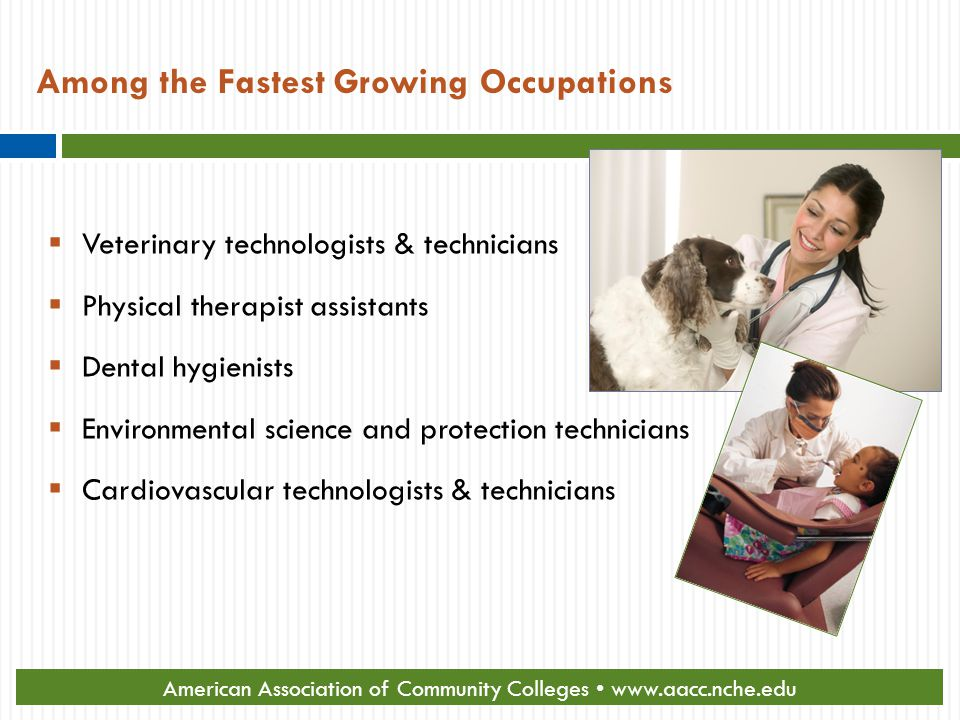Among the Fastest Growing Occupations  Veterinary technologists & technicians  Physical therapist assistants  Dental hygienists  Environmental science and protection technicians  Cardiovascular technologists & technicians Source: U.S.