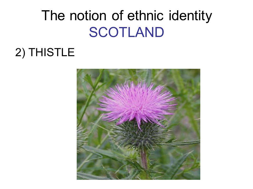 The notion of ethnic identity SCOTLAND 2) THISTLE