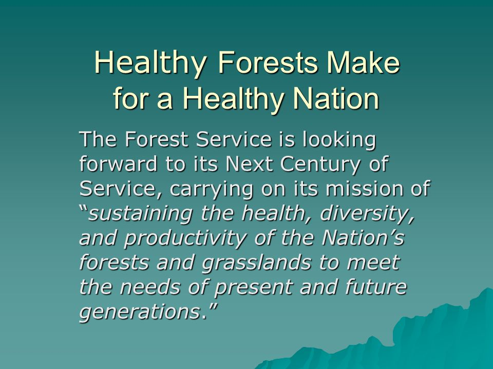 """Healthy Forests Make for a Healthy Nation The Forest Service is looking forward to its Next Century of Service, carrying on its mission of """"sustaining"""
