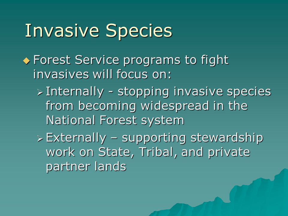 Invasive Species  Forest Service programs to fight invasives will focus on:  Internally - stopping invasive species from becoming widespread in the