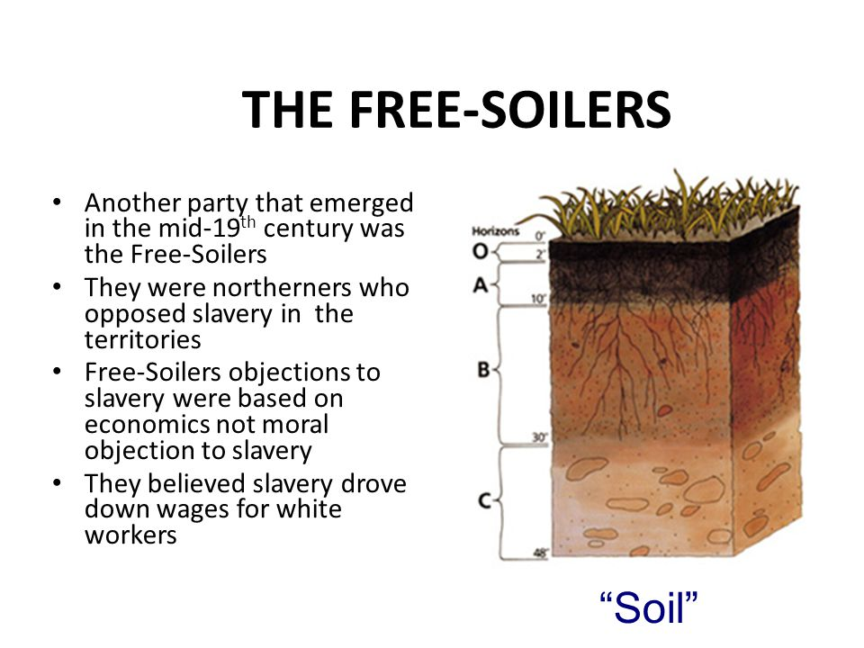 THE FREE-SOILERS Another party that emerged in the mid-19 th century was the Free-Soilers They were northerners who opposed slavery in the territories