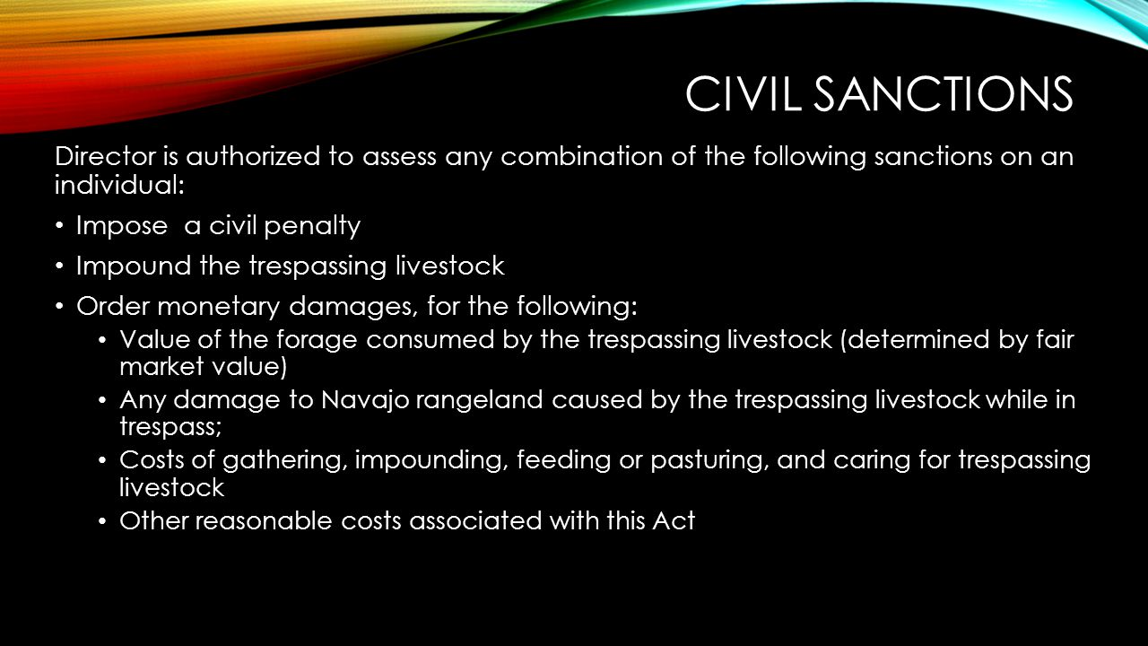 CIVIL SANCTIONS Director is authorized to assess any combination of the following sanctions on an individual: Impose a civil penalty Impound the tresp