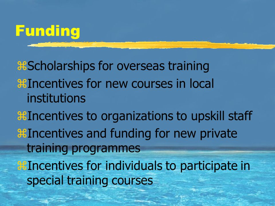 Funding zScholarships for overseas training zIncentives for new courses in local institutions zIncentives to organizations to upskill staff zIncentive