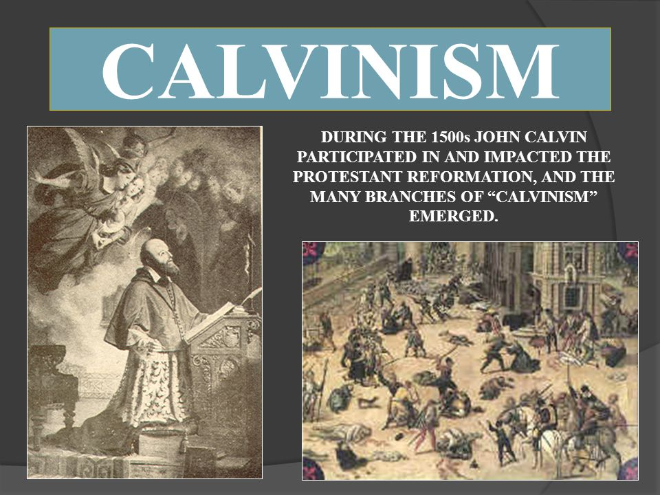 CALVINISM DURING THE 1500s JOHN CALVIN PARTICIPATED IN AND IMPACTED THE PROTESTANT REFORMATION, AND THE MANY BRANCHES OF CALVINISM EMERGED.