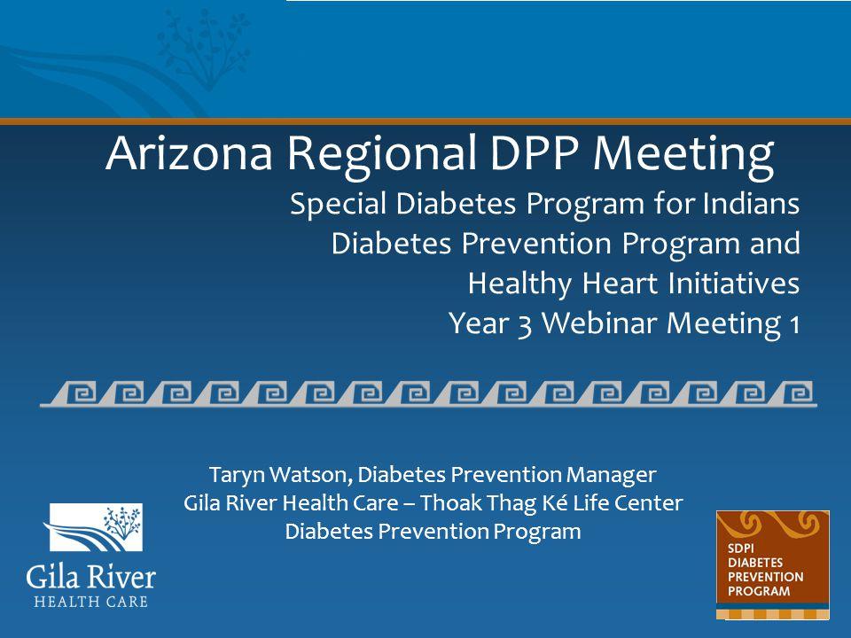 Arizona Regional DPP Meeting Special Diabetes Program for Indians Diabetes Prevention Program and Healthy Heart Initiatives Year 3 Webinar Meeting 1 T