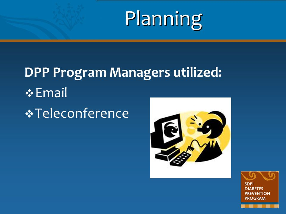 Planning DPP Program Managers utilized:  Email  Teleconference