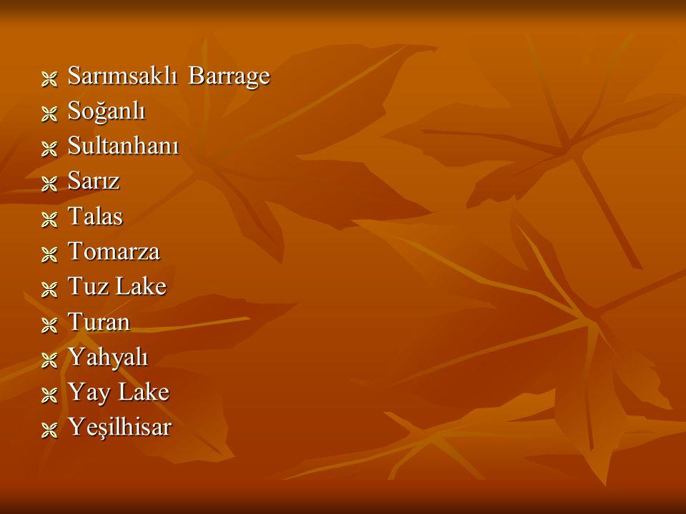 SSSSarımsaklı Barrage SSSSoğanlı SSSSultanhanı SSSSarız TTTTalas TTTTomarza TTTTuz Lake TTTTuran YYYYahyalı YYYYay Lake YYYYeşilhisar