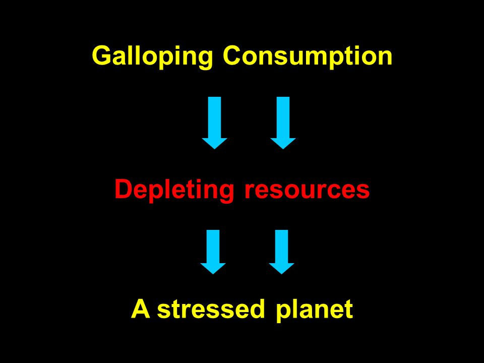 Galloping Consumption Depleting resources A stressed planet
