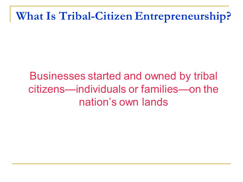 American Indian Economies Nation-owned Enterprises Citizen Entrepreneurship But for others, citizen entrepreneurship can be a key building block in a sustainable Indigenous economy