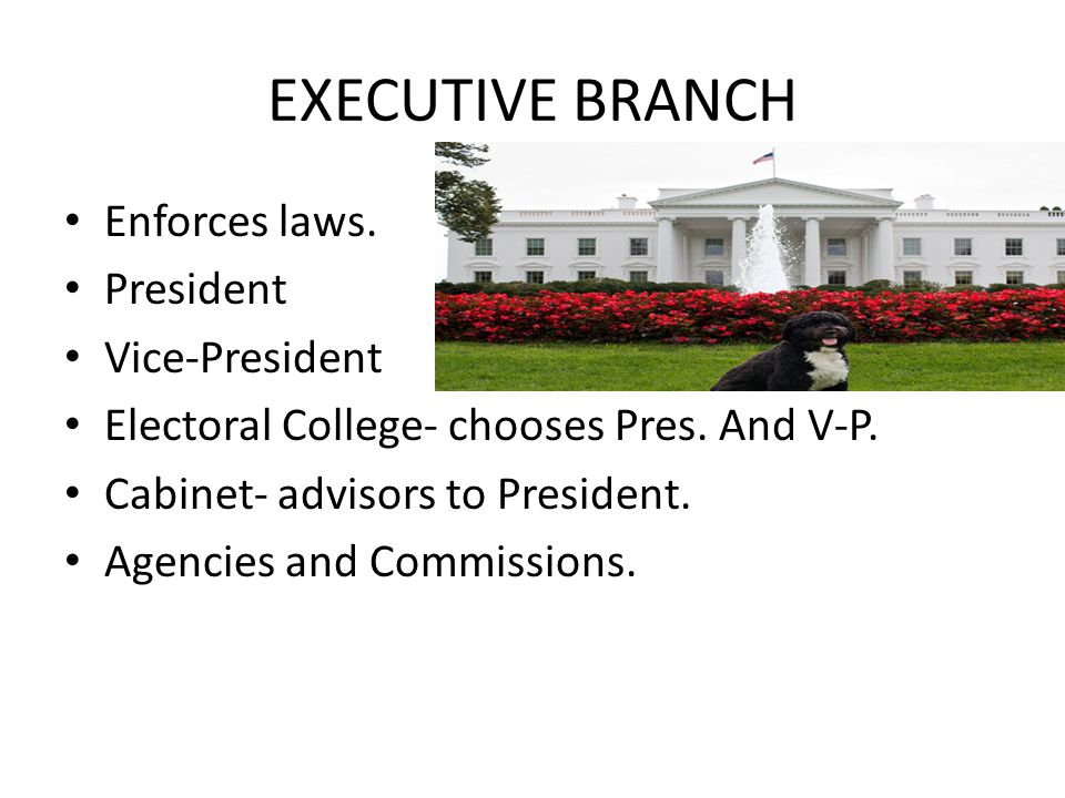 EXECUTIVE BRANCH Enforces laws.President Vice-President Electoral College- chooses Pres.