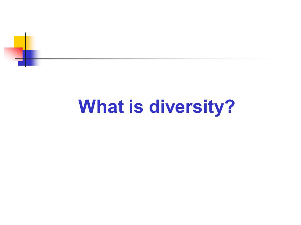 Diversity to inclusivity An inclusive organization where all people are empowered to do their best work.