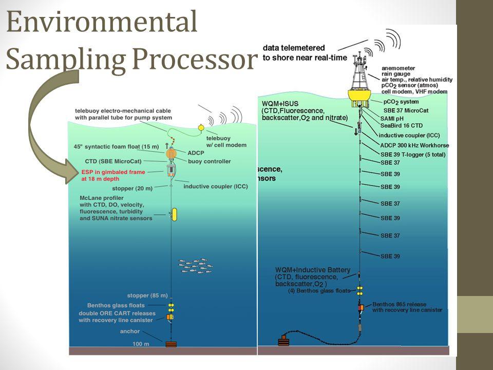 Environmental Sampling Processor