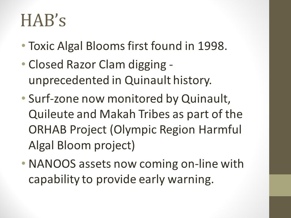 HAB's Toxic Algal Blooms first found in 1998. Closed Razor Clam digging - unprecedented in Quinault history. Surf-zone now monitored by Quinault, Quil