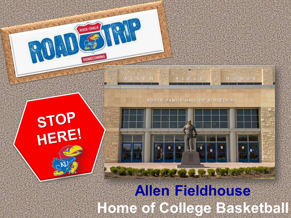 STOP HERE!