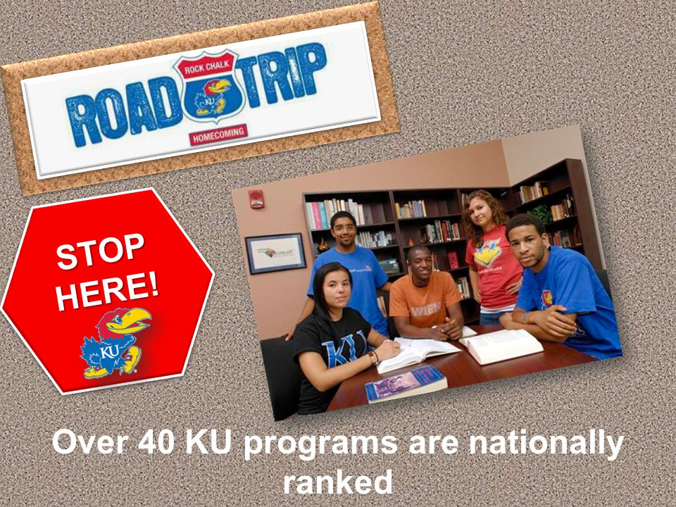 KU offers more than 100 fields of study. STOP HERE!