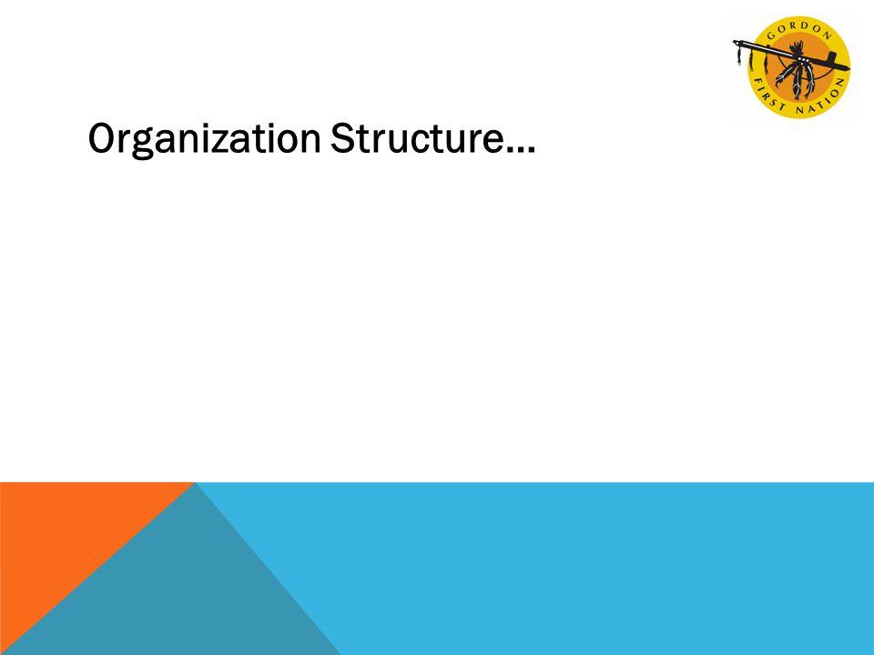 Organization Structure…