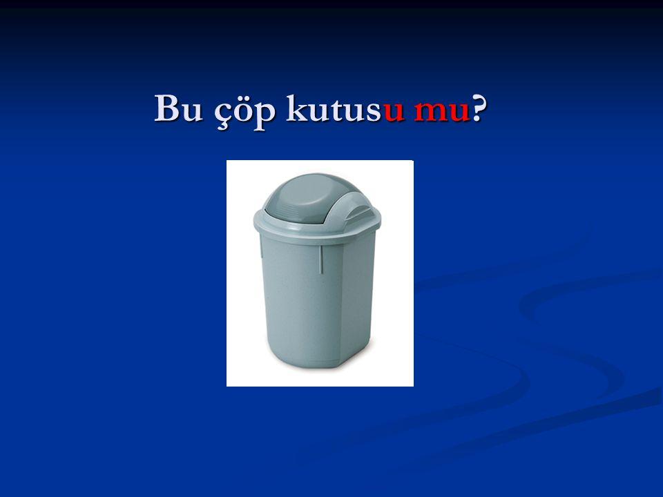 Bu çöp kutusu mu?