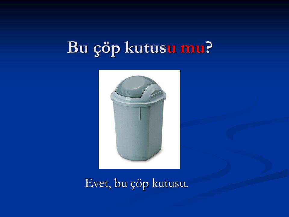 Evet, bu çöp kutusu.