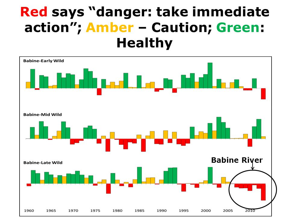 Red says danger: take immediate action ; Amber – Caution; Green: Healthy Babine River