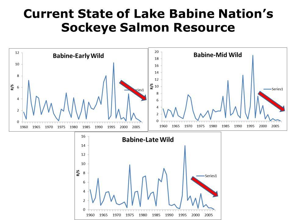 Current State of Lake Babine Nation's Sockeye Salmon Resource
