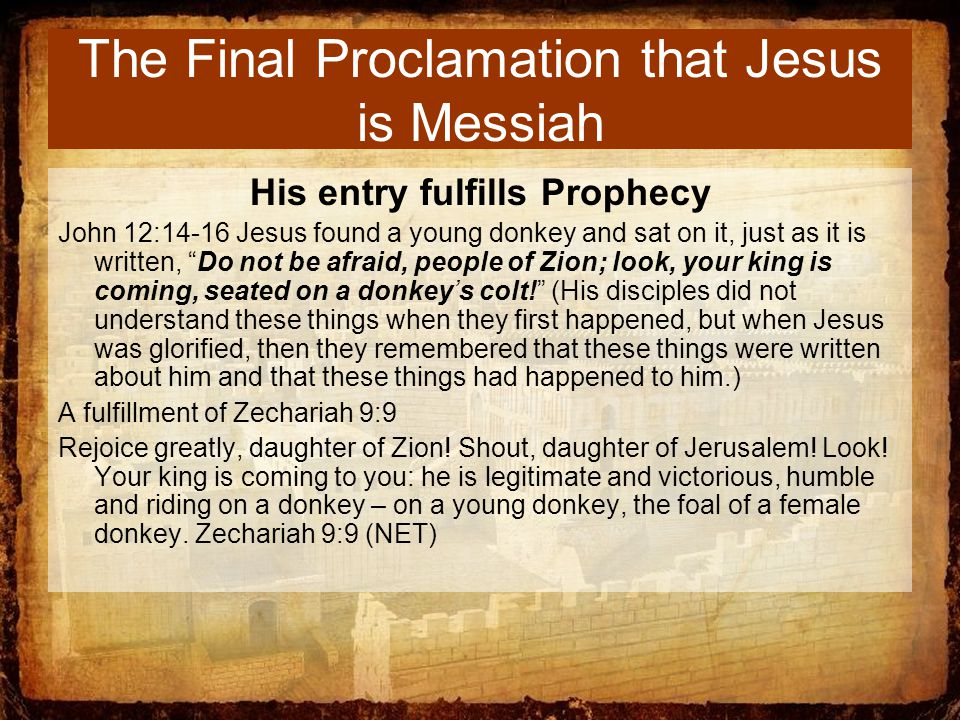The Final Proclamation that Jesus is Messiah His entry fulfills Prophecy John 12:14-16 Jesus found a young donkey and sat on it, just as it is written, Do not be afraid, people of Zion; look, your king is coming, seated on a donkey's colt! (His disciples did not understand these things when they first happened, but when Jesus was glorified, then they remembered that these things were written about him and that these things had happened to him.) A fulfillment of Zechariah 9:9 Rejoice greatly, daughter of Zion.