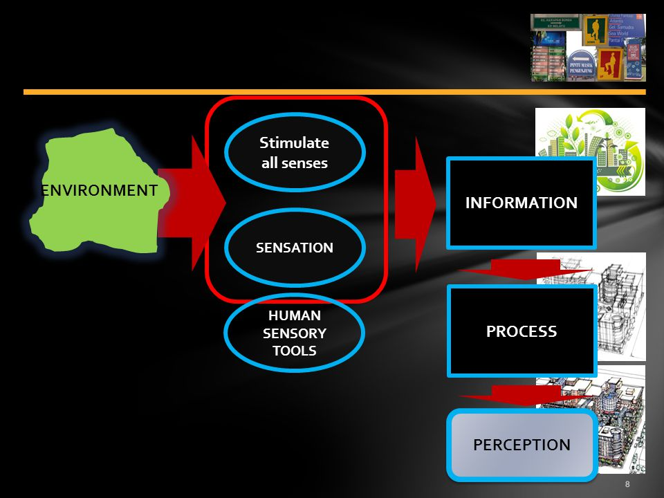 8 Stimulate all senses SENSATION INFORMATION PROCESS PERCEPTION ENVIRONMENT HUMAN SENSORY TOOLS