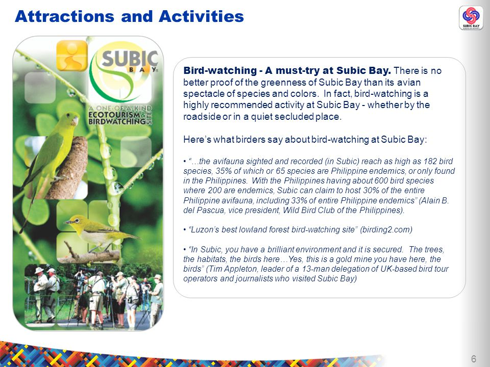 6 Bird-watching - A must-try at Subic Bay.