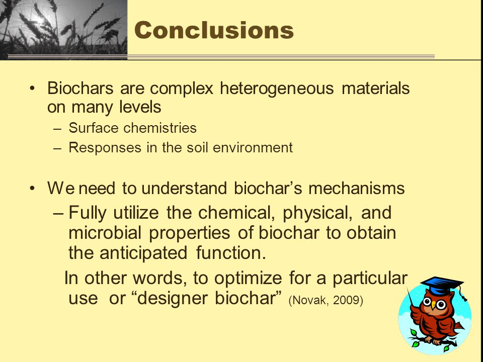 Conclusions Biochars are complex heterogeneous materials on many levels –Surface chemistries –Responses in the soil environment We need to understand