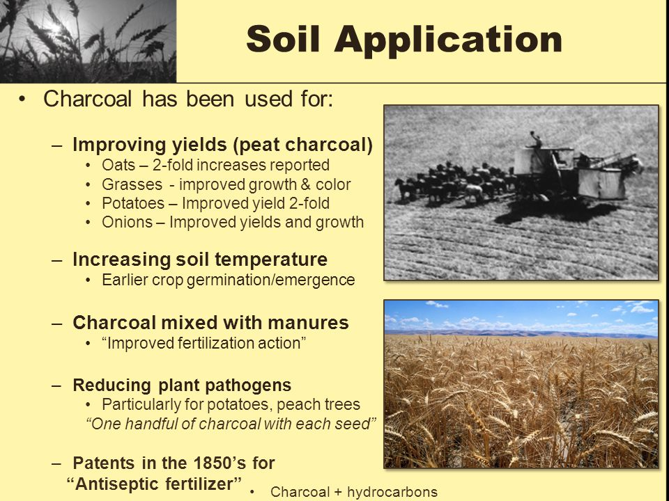 Soil Application Charcoal has been used for: –Improving yields (peat charcoal) Oats – 2-fold increases reported Grasses - improved growth & color Pota