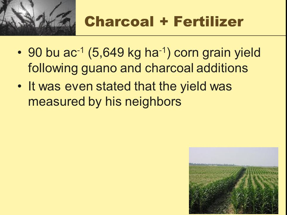 Charcoal + Fertilizer 90 bu ac -1 (5,649 kg ha -1 ) corn grain yield following guano and charcoal additions It was even stated that the yield was meas