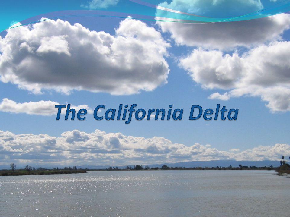 Delta Facts Major Cities Partly Within the Delta: Sacramento, Stockton, West Sacramento, Oakley, and Rio Vista