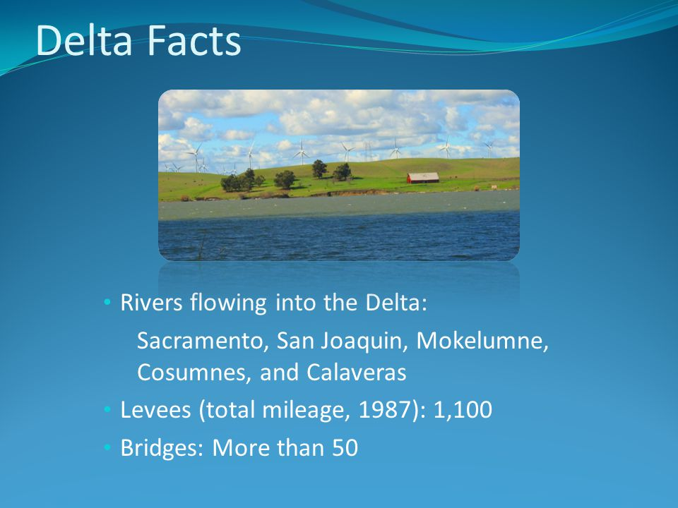 Delta Facts Rivers flowing into the Delta: Sacramento, San Joaquin, Mokelumne, Cosumnes, and Calaveras Levees (total mileage, 1987): 1,100 Bridges: More than 50