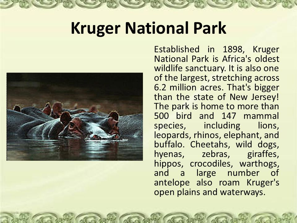 Kruger National Park Established in 1898, Kruger National Park is Africa's oldest wildlife sanctuary. It is also one of the largest, stretching across